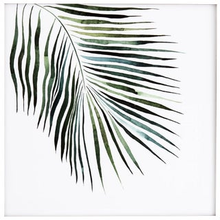 Palm Contemporary Framed Print For Sale