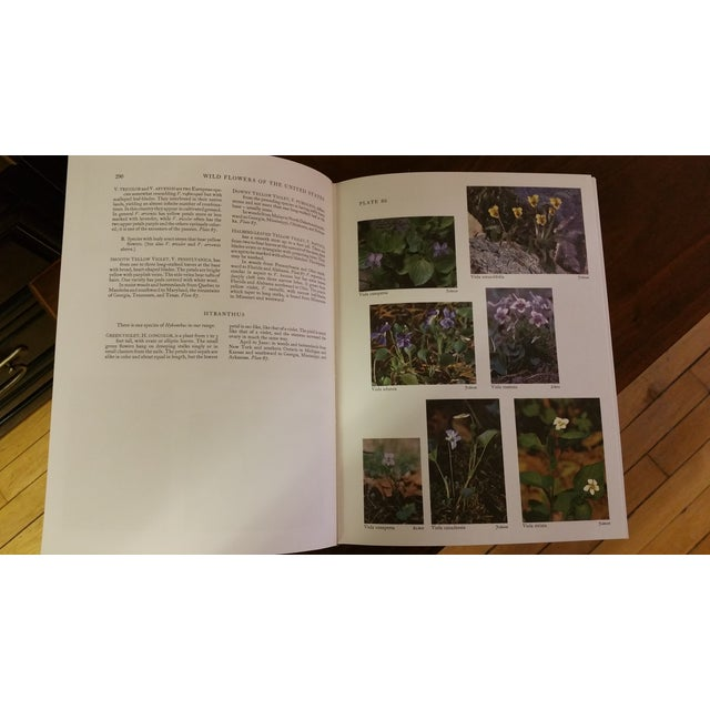 Wild Flowers of the United States Hardcover Two Volume Set For Sale In New York - Image 6 of 7
