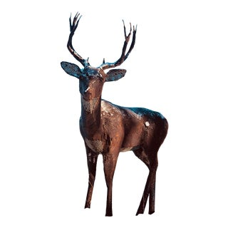 Life Sized Jim Dolan Mule Deer Sculpture For Sale
