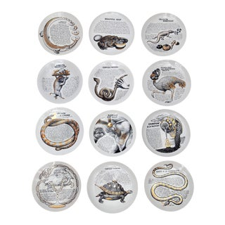 """Cook Plates"" by Piero Fornasetti for Fleming Joffe Ltd - Set of 12 For Sale"