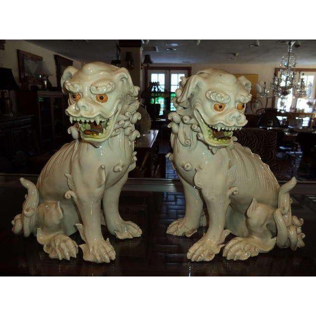Pair of exceptional 19th century porcelain foo dogs. Amazing attention to detail with it's curly locks of hair and...