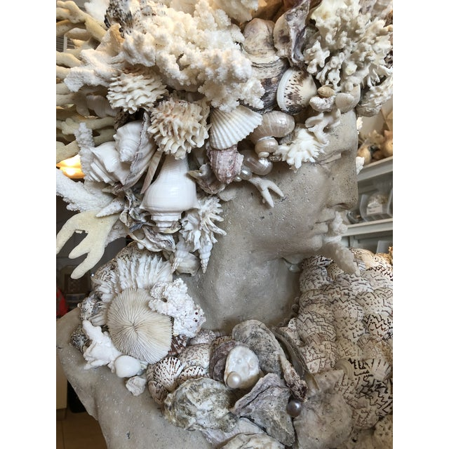 Grand Tour Contemporary Nautical Shell & Coral Apollo Bust For Sale - Image 3 of 9