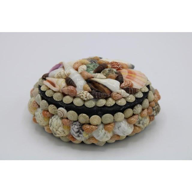 Mid 20th Century Vintage Organic Seashell Jewelry Treasure Box For Sale - Image 4 of 12