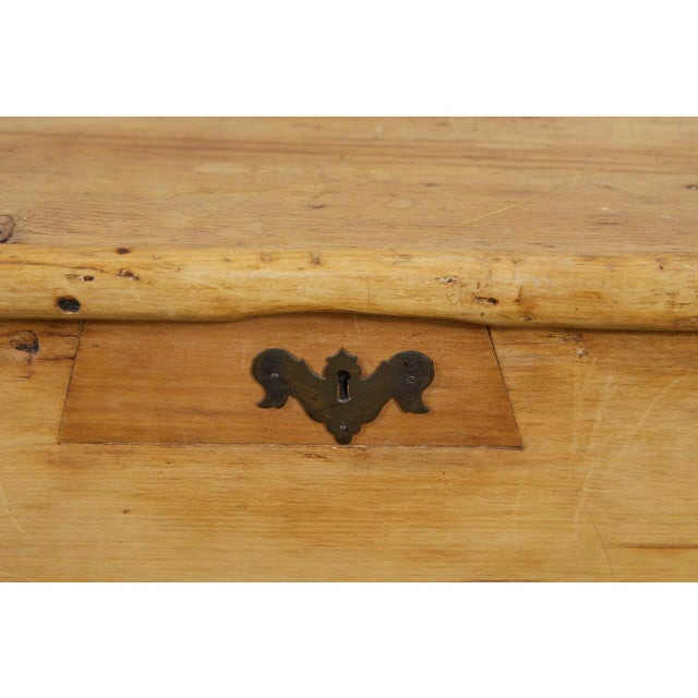 Brown Large English Pine Trunk For Sale - Image 8 of 9