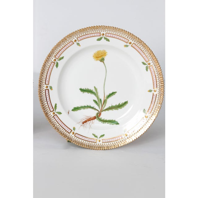 Mid 20th Century Pair of Flora Danica Plates by Royal Copenhagen #20/3573 and #20/3549 For Sale - Image 5 of 13