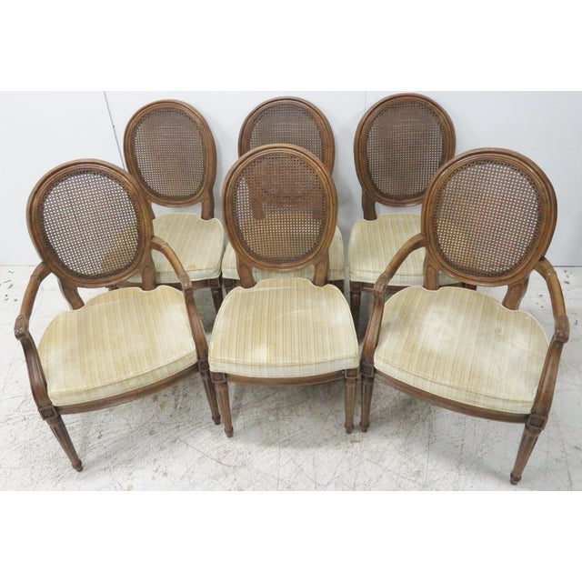Louis XVI Style Caned Back Dining Chairs - Set of 6 - Image 4 of 8