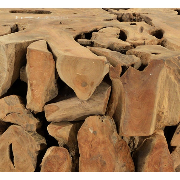 Teak wood root coffee table chairish