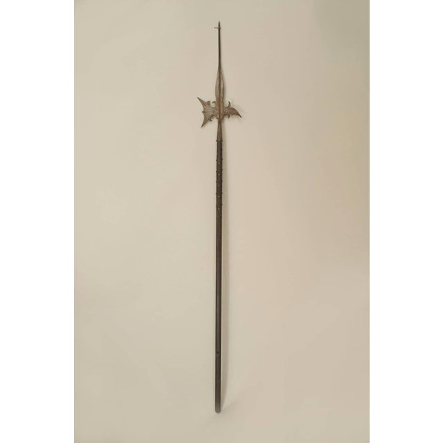 Renaissance 20th Century English Renaissance Style Halbert Spear For Sale - Image 3 of 3