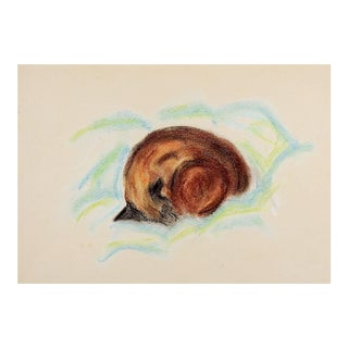Sleeping Siamese Cat Pastel Drawing For Sale