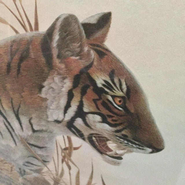 "Copper Framed John Ruthven ""Bengal Tiger"" Lithograph From 1970s Safari Series For Sale In New York - Image 6 of 9"