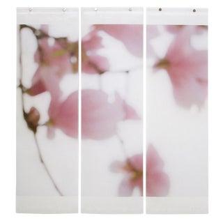 Jeri Eisenberg Magnolia Triptych For Sale