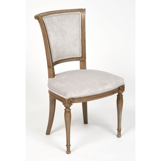 Set of six French Directoire style beech wood chairs, strong and elegant with a new velvet blend upholstery in a dove gray...