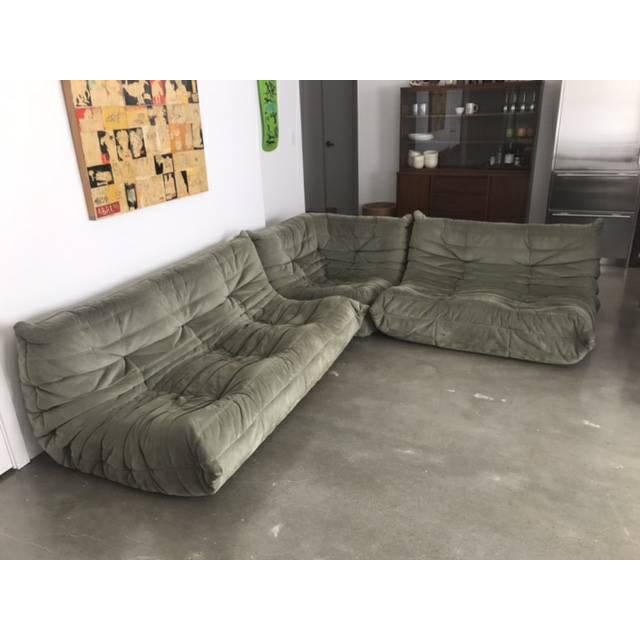 Gorgeous Cherry Laurel Green Togo sectional set, 1 3 seater sofa, 1 seater love seat, 1 corner chair. Ready for new home....