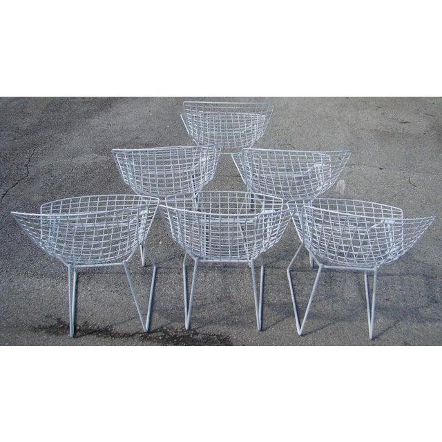 Harry Bertoia Wire Chairs - Set of 6 | Chairish