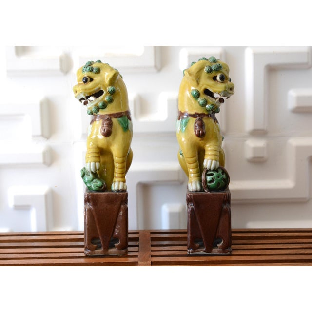 Asian 1940s Foo Dog Statues - a Pair For Sale - Image 3 of 11