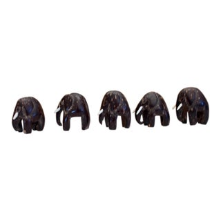 Coconut Shell Carved Elephants in Oval Wood Storage Box For Sale
