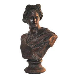 Plaster Apollo Bust Bronze Imitation Sculpture For Sale