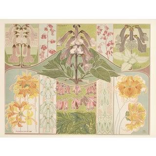 C1900 Botanic Decorative Design Chromolithograph, Matted For Sale