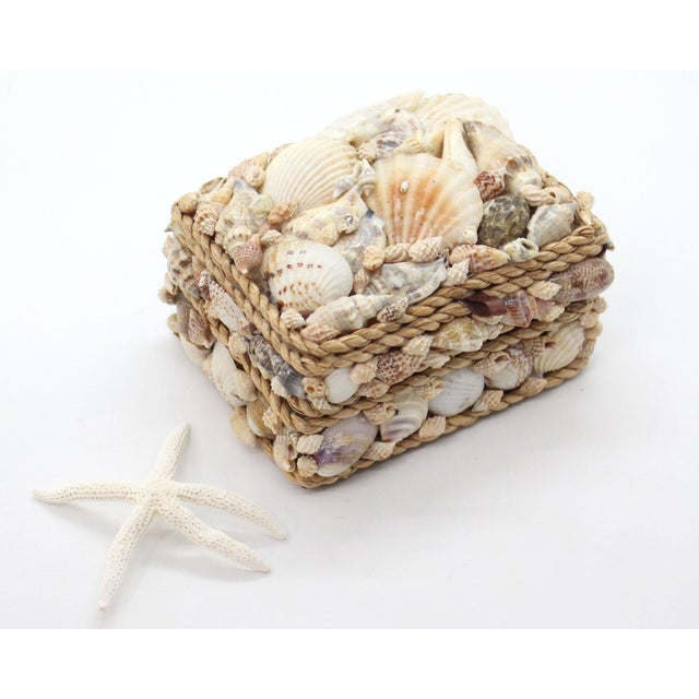 Rococo Vintage Shell Encrusted Grotto Style Box For Sale - Image 3 of 6