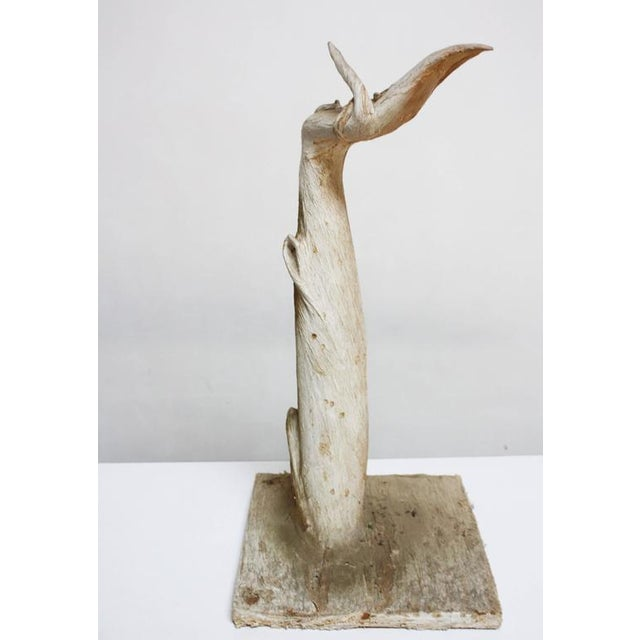 Petrified and Painted Tree Branch 'Hand' Sculpture on Board - Image 2 of 9