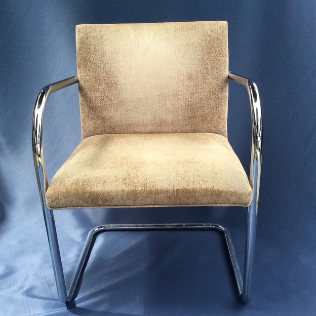 Tubular Modern Brno Chair by Knoll For Sale In Los Angeles - Image 6 of 6