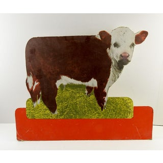 Vintage Feed Store Counter Display of Hereford Calf