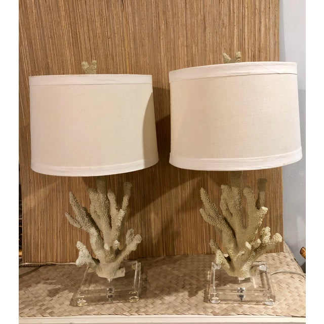 Faux Coral Custom Table Lamps on Lucite Bases - a Pair For Sale - Image 4 of 6