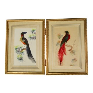 1940s Vintage Mexican Bird Framed Paintings For Sale
