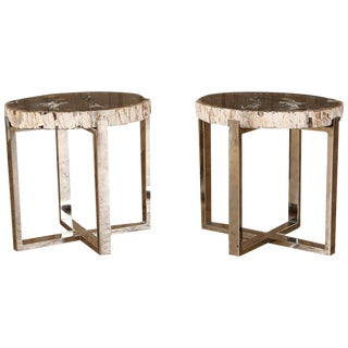 1970s Mid-Century Modern Petrified Wood Tables - a Pair For Sale