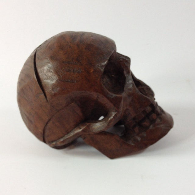 Small Anatomical Wooden Skull For Sale - Image 4 of 6