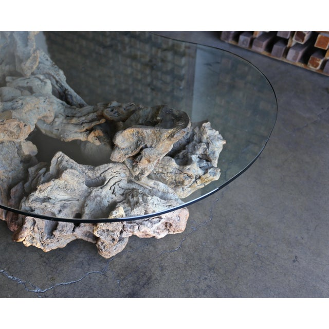 1960s 1960s Sculptural Driftwood Coffee Table For Sale - Image 5 of 9