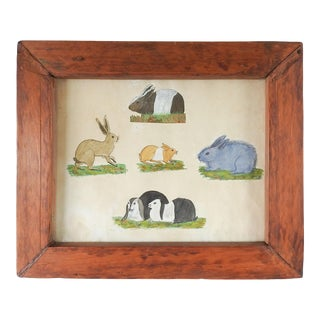 Antique Watercolor Painting Studies of Rabbits For Sale