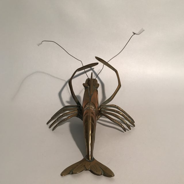 Single brass lobster sculpture with wall hook.