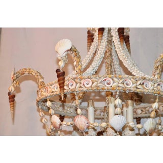 Seashell Encrusted Chandelier Preview