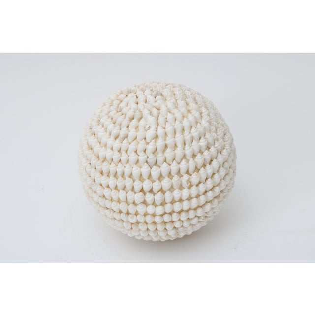 Beautiful Shell Encrusted Sphere will add a wonderful touch to your bowls or decorations. We have many Shell encrusted...