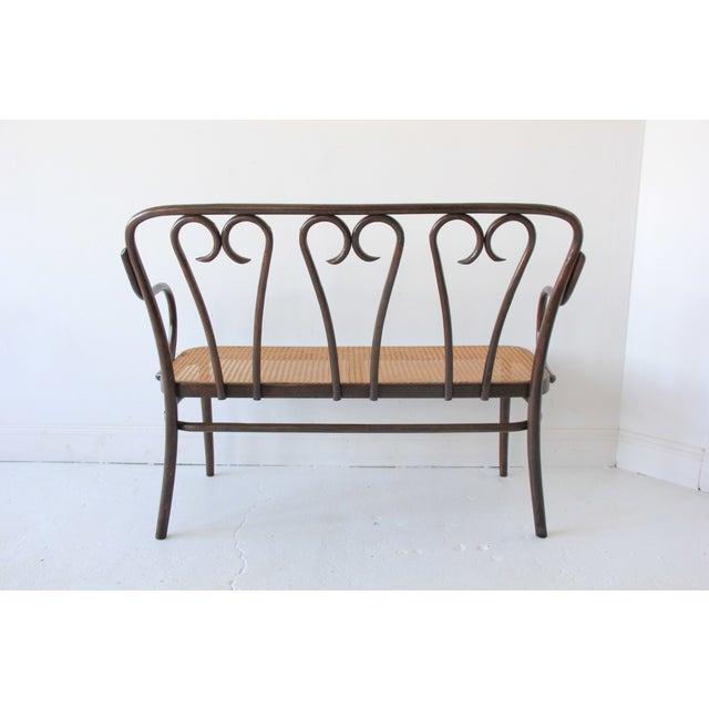 Vintage Bentwood & Cane Bench - Image 5 of 6