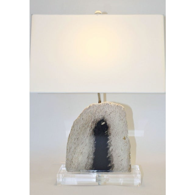Petrified Palm Wood Lamp - Image 2 of 2