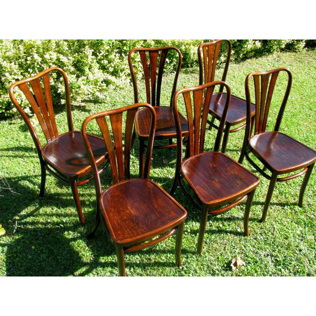 Vintage Dining Chairs by Thonet, 1930s - Set of 6 For Sale - Image 9 of 11