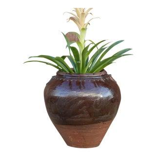 Antique Malabar Martaban Jar For Sale