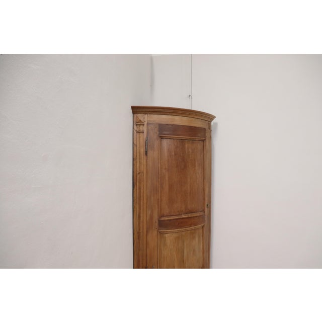 19th Century Italian Solid Chestnut Large Corner Cupboard or Corner Cabinet For Sale - Image 6 of 11