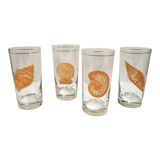Culver Mid Century Seashell Designs Highball Glasses - Set of 4 For Sale