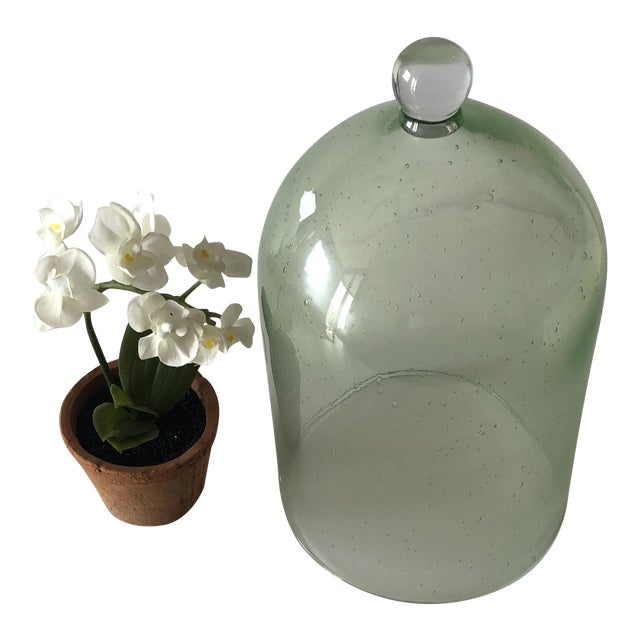 Green Terrarium Dome With Silk White Flowers For Sale