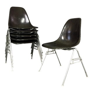 Six (6) Charles and Ray Eames Fiberglass Shell Chairs, Stacking Base For Sale