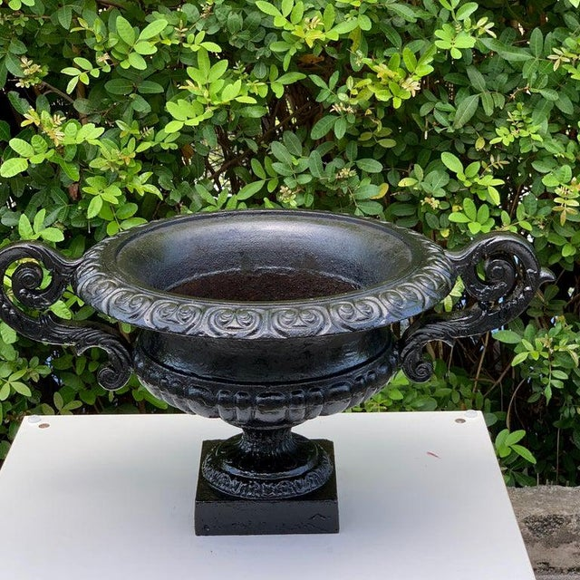 Pair of Handled Cast Iron Campana Garden Urns, in Black For Sale - Image 4 of 8
