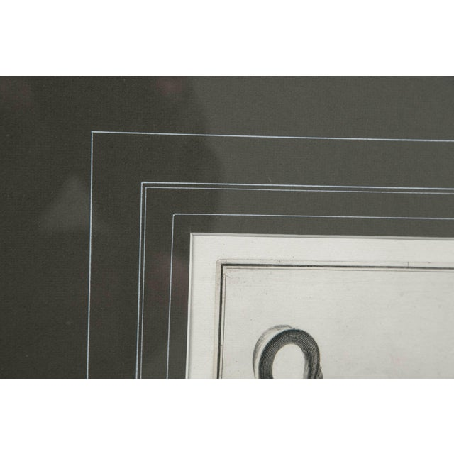 Framed Etching, Neoclassical Vessel, 19th Century For Sale - Image 4 of 6