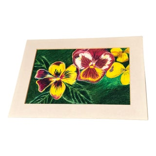 Pansies Original Colored Pencil Drawing For Sale