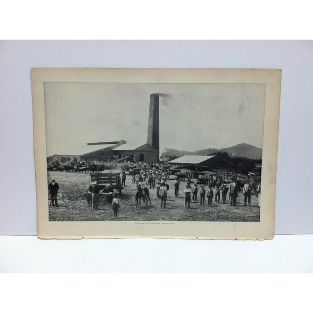 "Antique Our Islands and Their People Print, ""Sugar Mill and Employees Near Havana"" - n.d. Publishing Co. For Sale - Image 4 of 4"