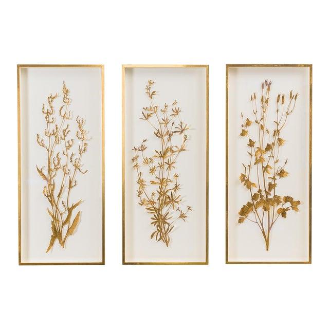Sophie Coryndon, Illuminated Herbarium Triptych, Uk For Sale