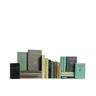 Bird Watchers - Set of Twenty Decorative Books