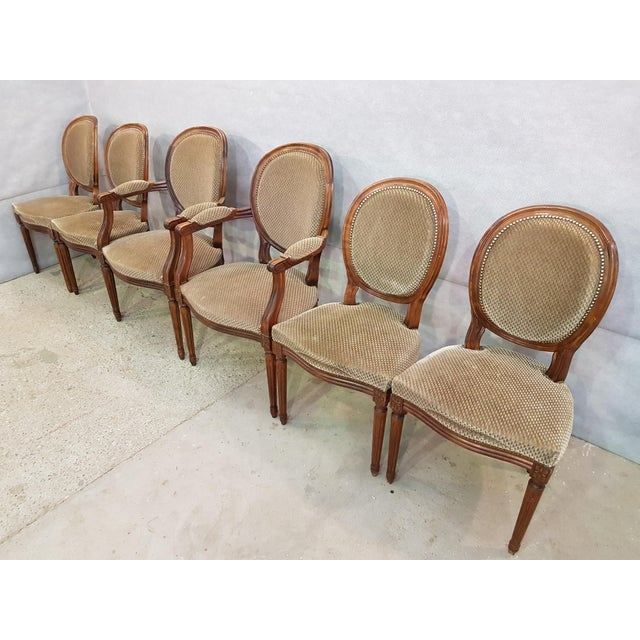 Set of 6 Louis XVI French Medallion Beige Velvet Dining Chairs Two Armchairs Four Side Chairs For Sale - Image 4 of 13